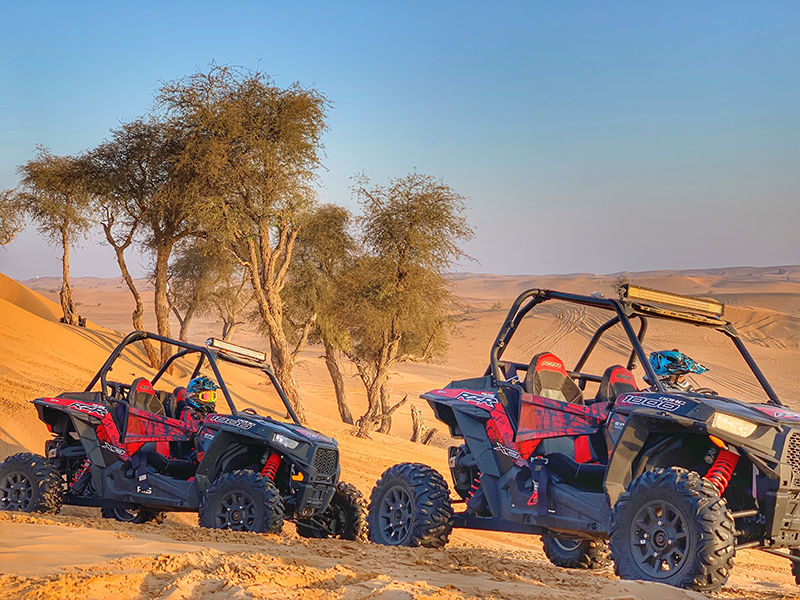 Thing That Can Elevate Your Buggy Safari Experience in Dubai
